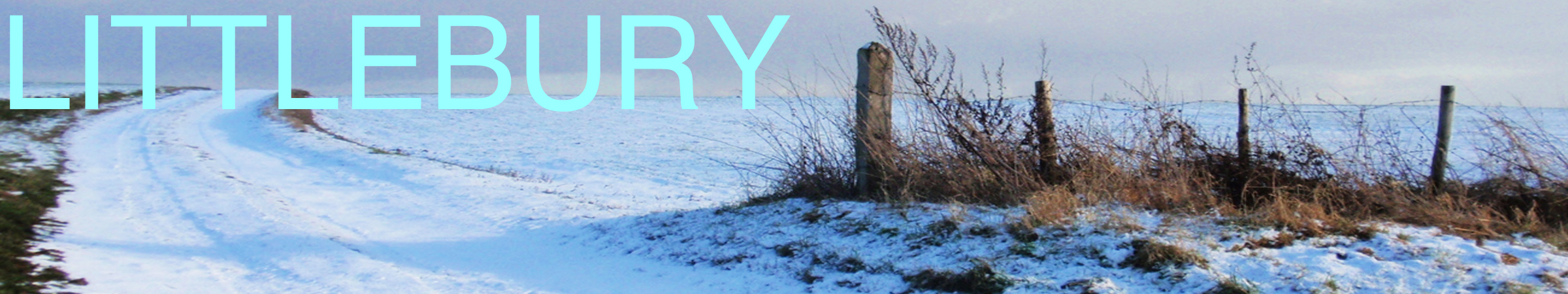 Littlebury Website Banner - January